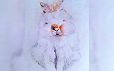 Fanny – o kreslení zvierat